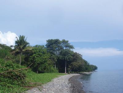 Meretas Jalur Energi di Nusa Tenggara