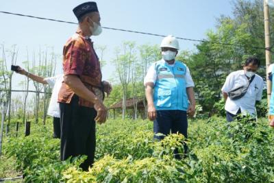Photo of Beralih dari BBM ke Listrik, Rezeki Petani Bantul Kian Mengalir di Lahan Pasir