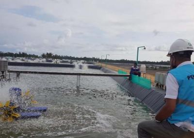 Photo of Dukung Produktivitas, PLN Siap Pasok Listrik 65 MVA ke Kawasan Tambak Udang di Sulteng