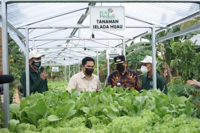 Photo of Menteri BUMN Takjub Dengan Program Electrifying Agriculture PLN