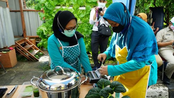CSR Binaan PLN Disjaya Produksi Mie Sehat dari Sayuran Hidroponik