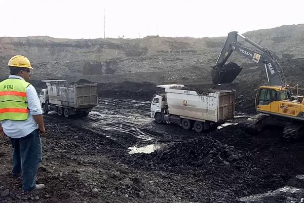 Jika Tak Segera Transisi Energi, Tenaga Kerja Industri Batubara Terdampak