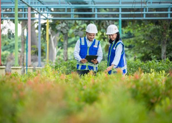 Kerja Sama dengan CDP, PTBA Dukung Program Net Zero Karbon RI