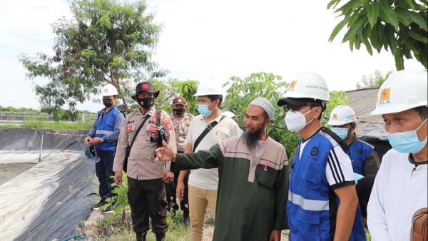 Listrik PLN Genjot Produktivitas Petambak Bratasena Lampung