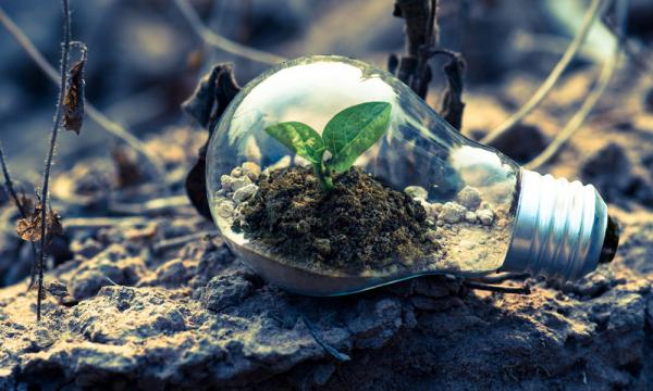 Mengenal Program Studi Teknik Bioenergi dan Kemurgi ITB
