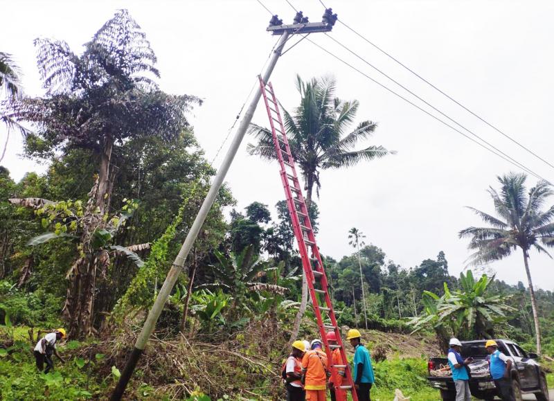 Pasca Gempa 7,2 SR, PLN Pulihkan 99% Kelistrikan di Halmahera Selatan