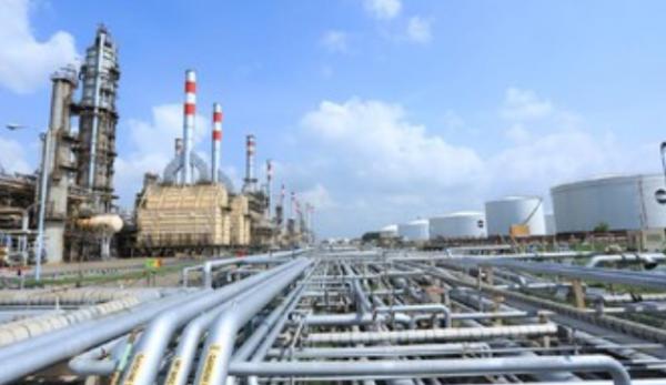 Pertamina Serius Mengolah CPO untuk Mencukupi Kebutuhan Energi Nasional