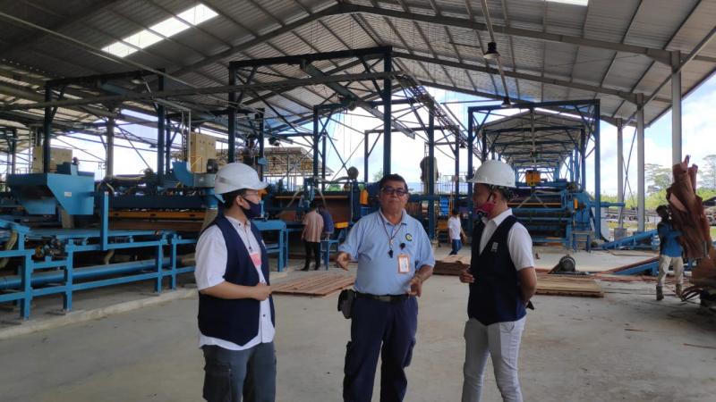 PLN Dorong Pertumbuhan Industri di Daerah Perbatasan
