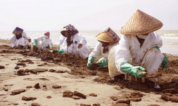 Prof. Hefni: Tumpahan Minyak Bersih, Saatnya Teliti Dampak