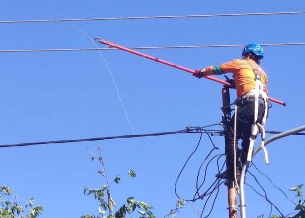 Pulihkan Gangguan Imbas Siklon Tropis Toraja, Pelanggan NTT Kembali Nikmati Listrik