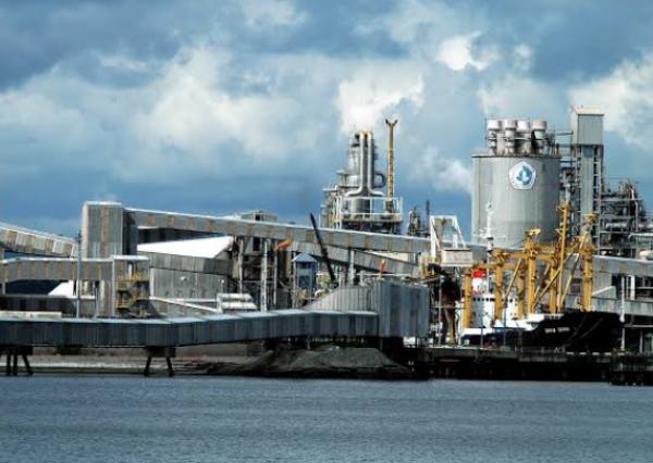 Pupuk Kaltim Kembangkan Industri Oleokimia, Industri CPO Dalam Negeri Bakal Terdongkrak