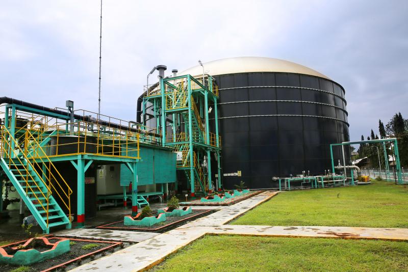 Subholding Power & NRE Pertamina Gencar Garap PLTBg & PLTS