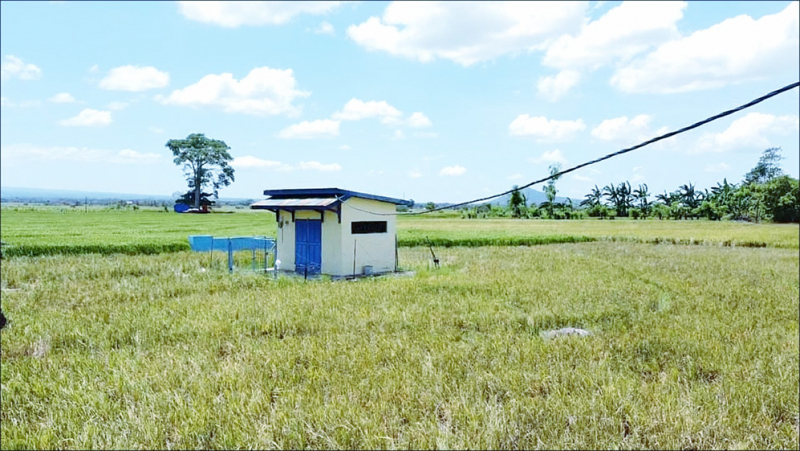 Upaya PLN Tingkatkan Produktivitas dan Kesadaran Go Green Petani Lewat SPLU