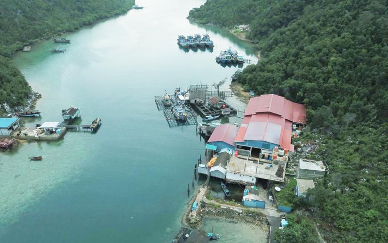 Wujudkan SDM Unggul, PLN Dukung Geliat Ekonomi Pulau Terluar